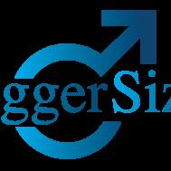 biggersizelogo.png